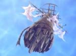 WEB Astrolabe Mast 2